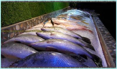 Ikan-ikan segar untuk dipilih dan untuk dimasak