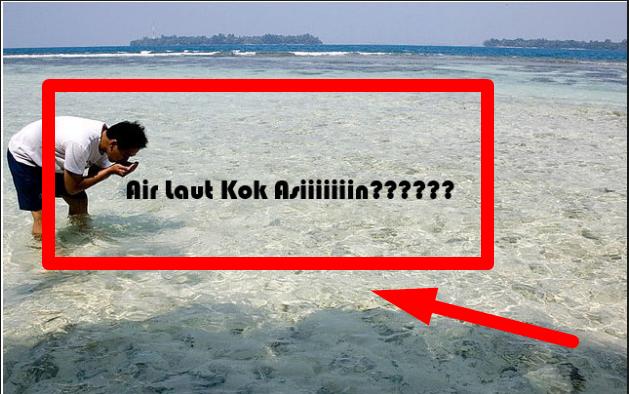 Tahu Nggak Mengapa Air Laut Rasanya Asin? Sebab Ikan Berkeringat Di Kajar-Kejar Ne....Percaya Ngga?