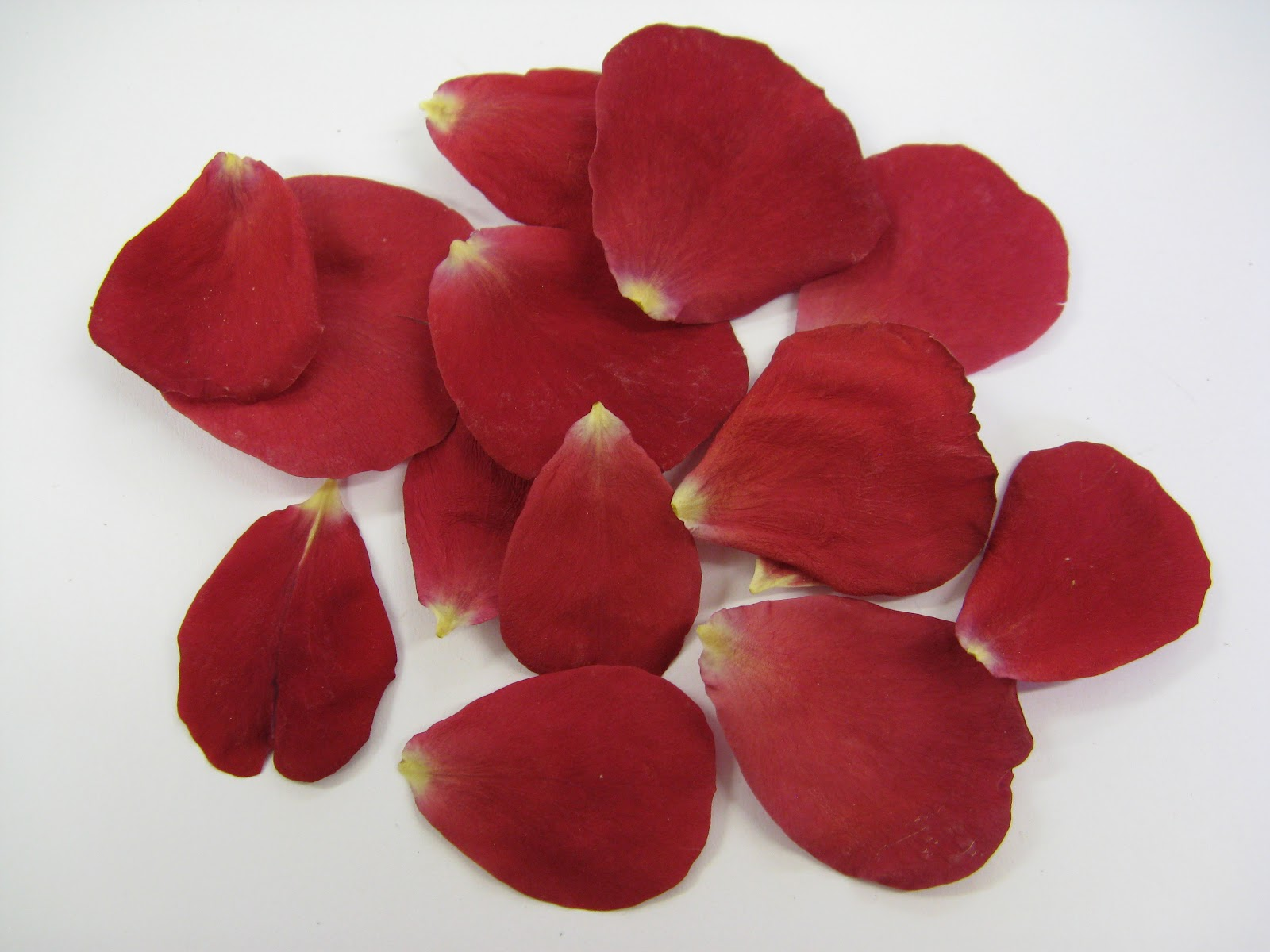 The Confetti Blog: One for the Boys - The Real Flower ...
