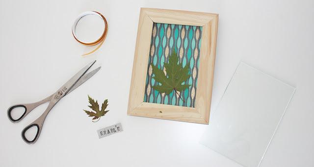 Herbier sous cadre - DIY
