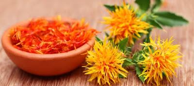 Óleo de Cártamo é fonte de vitamina E