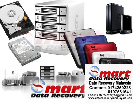 Data-Recovery-Miri
