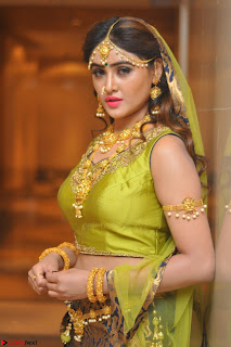 Sony Charishta in Green Choli Ghagra Transparent Chunni Ethnic Wear March 2017 025.JPG