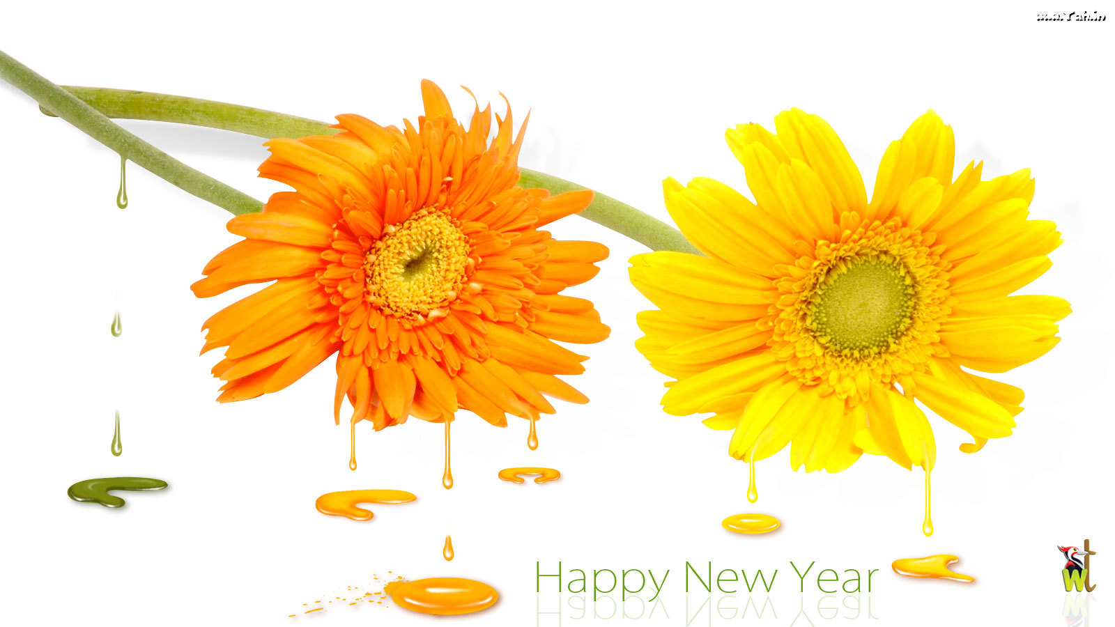 New Year Flowers Gifts: 2013 New Year Flowers Wishes ...