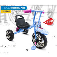 wimcycle cinderella tricycle
