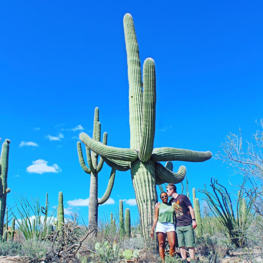 saguaro national park day trip 1