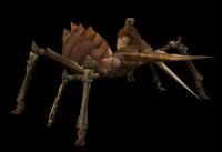 Metin 2 Örümcek Bacakları Nereden Düşer ?
