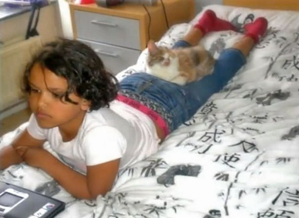 Adults Were Terrified To Look At The Kitty, Until A 7-Year-Old Girl Saved Her