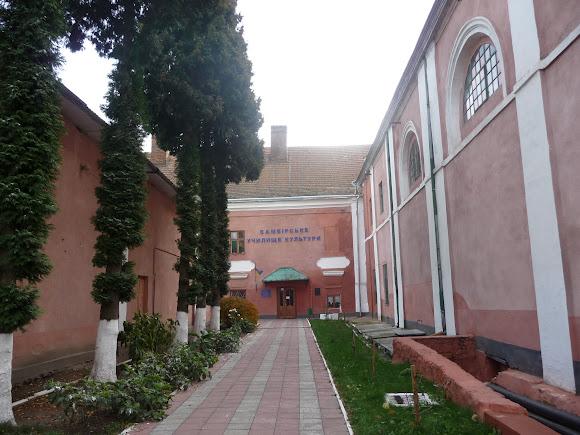 Самбір. Училище культури