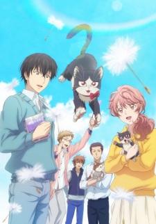 Xem Anime Sống Chung Với Hoàng Thượng -Doukyonin wa Hiza Tokidoki Atama no Ue - My Roommate is a Cat VietSub