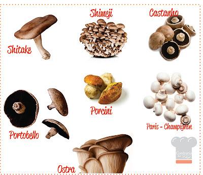 Resultado de imagem para tipos de cogumelos comestíveis
