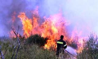 Υπό έλεγχο η πυρκαγιά στην περιοχή Ωραία του δήμου Ηλιδας