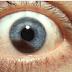 Cuidado com os olhos passa pela oncologia ocular