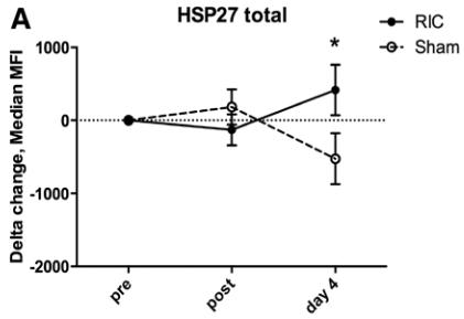 図:遠隔虚血コンディショニングとHSP27