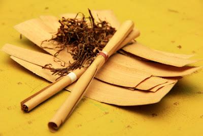 tembakau klobot