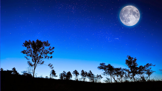 Jangan Tidur Sebelum Anda Melakukan 4 Hal yang Luar Biasa Ini, Apa Saja?