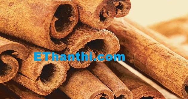 உடல் பருமனைக் குறைக்கும் லவங்கப் பட்டை   Cinnamon to reduce obesity !