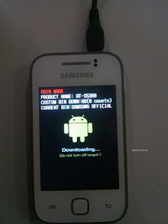Cara Flashing / Instal Samsung Galaxy Young GT-S5360 Di Pc