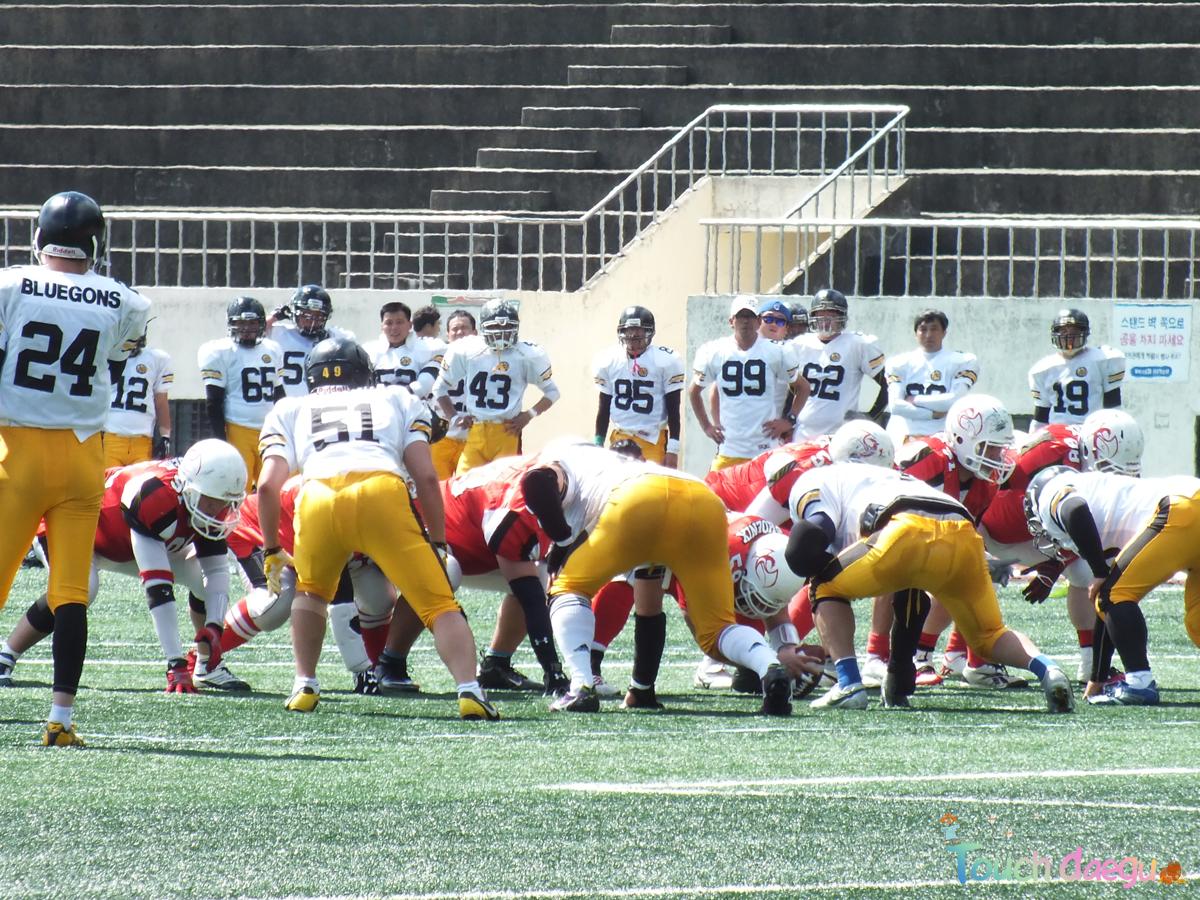 university of phoenix football team