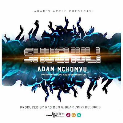 Adam Mchomvu - Shughuli