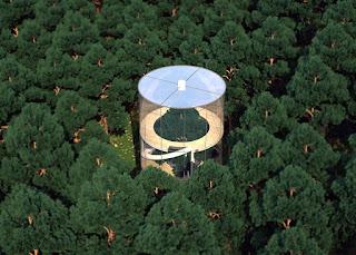 Transparent tubular tree house