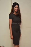 Priya Vadlamani super cute in tight brown dress at Stone Media Films production No 1 movie announcement 024.jpg