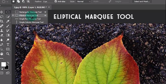 Cara Mudah Membuat Efek Water Drops Di Photoshop