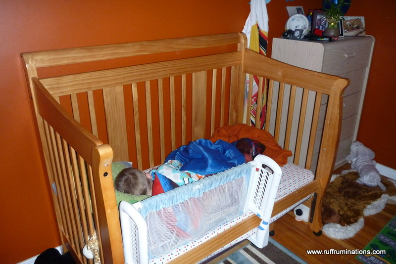How To Surprise A 4 Year Old Boy With A Bunk Bed Ruff Ruminations