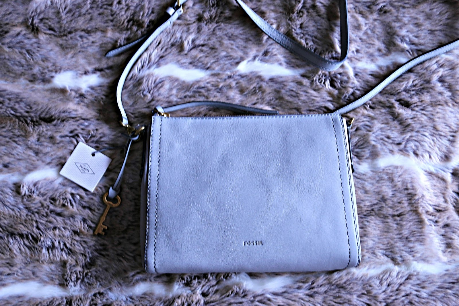 Fossil Ladies Cross Body Bag Image