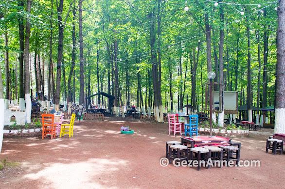 Asarkaya Kent Ormanı piknik yapmak için güzel, Ünye Ordu