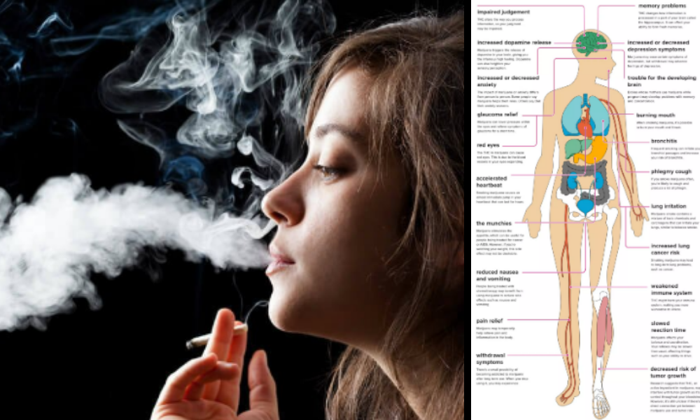smoking, effects of smoking, side effects of smoking, smoking effects, quit smoking, effects, harmful effects of smoking, smoking effects on lungs,