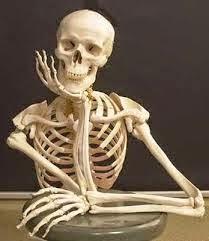 anacleto mueve el esqueleto