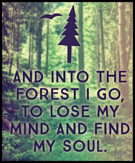 Staying Alive is Not Enough :And into the forest i go, to lose my mind and find my soul.