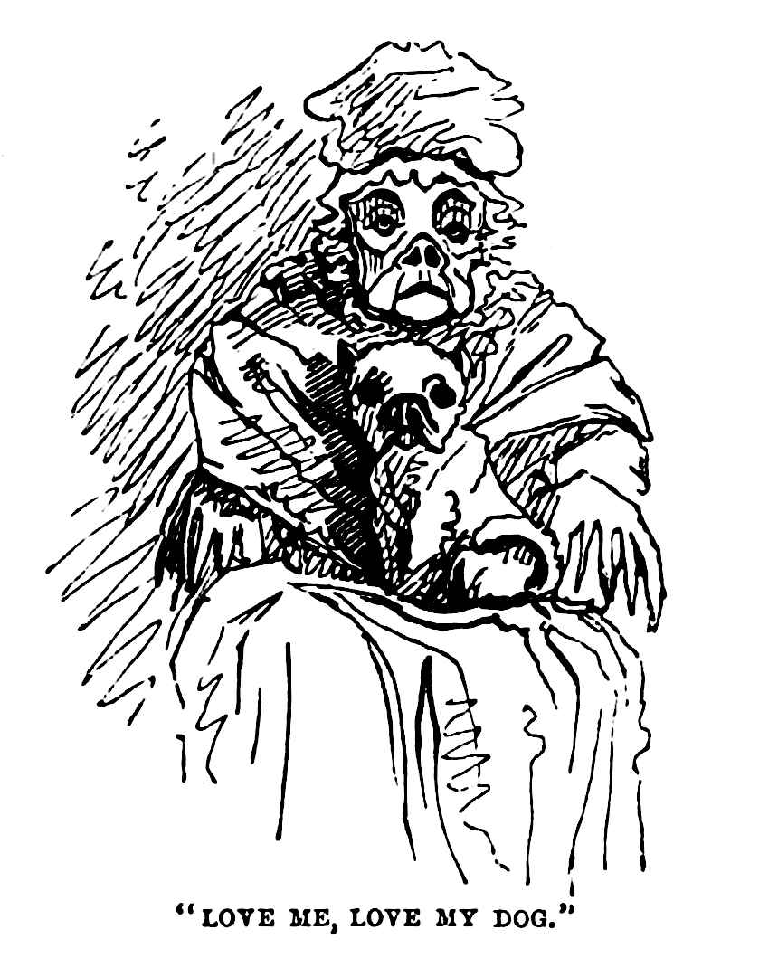 1861 cartoon of old woman and dog look alike
