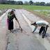 TNI Bertani