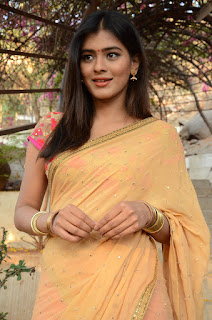 Actress Heba Patel Stills in Half Saree at Nenu Naa Boyfriends Movie Opening  0022