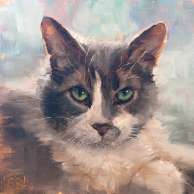 commissioned portrait of a grey and white cat oil painting  #catpainting Shannon Reynolds