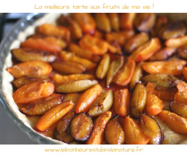 meilleure recette tarte aux fruits végétale vegan