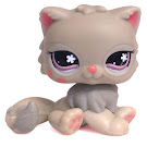 Littlest Pet Shop Singles Persian (#609) Pet