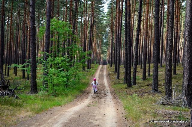 Roztocze z dzieckiem- pieszo, rowerem oraz kajakiem