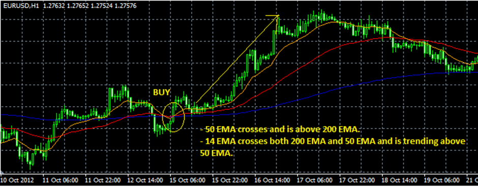 Bp forex traders