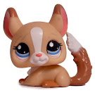 Littlest Pet Shop Blythe Loves Littlest Pet Shop Chinchilla (#2242) Pet