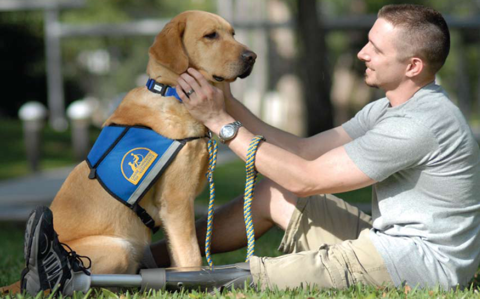 PTSD-Veteran-with-Assistance-Dog