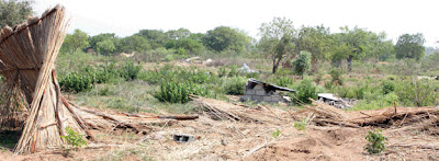 Polícia detém quatro burladores de terrenos na Matola