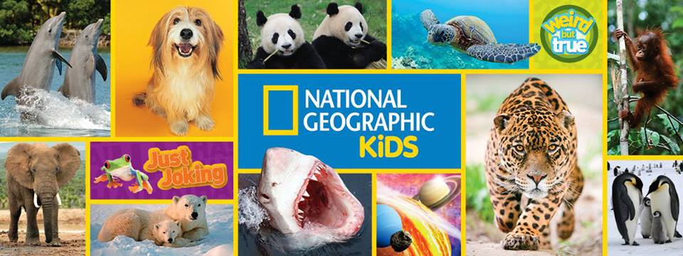 Java John Z's : National Geographic Kids Holiday Gift Pack