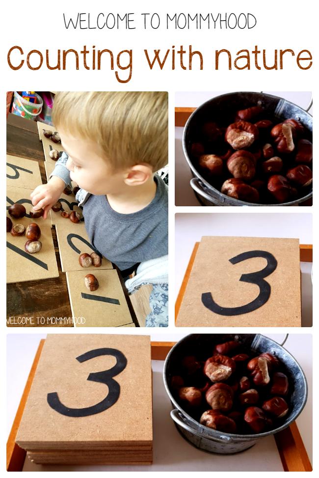 Nature in homeschool activities by Welcome to Mommyhood, #montessori, #nature, #preschoolactivities, #montessoriactivities,