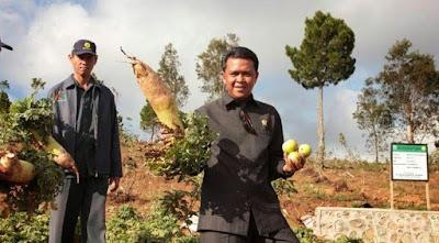 Konsep Pembagian Kekuasaan Horizontal dan Vertikal di Indonesia