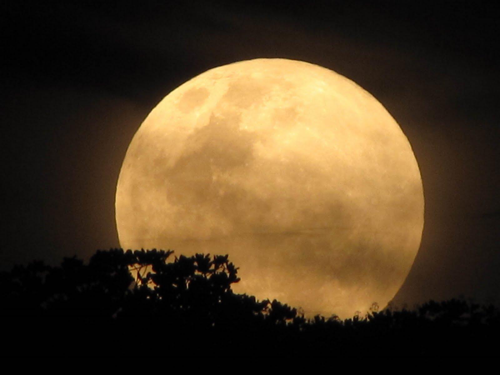 Mensagens Lua Cheia: JAKUTINGA: Lua Cheia