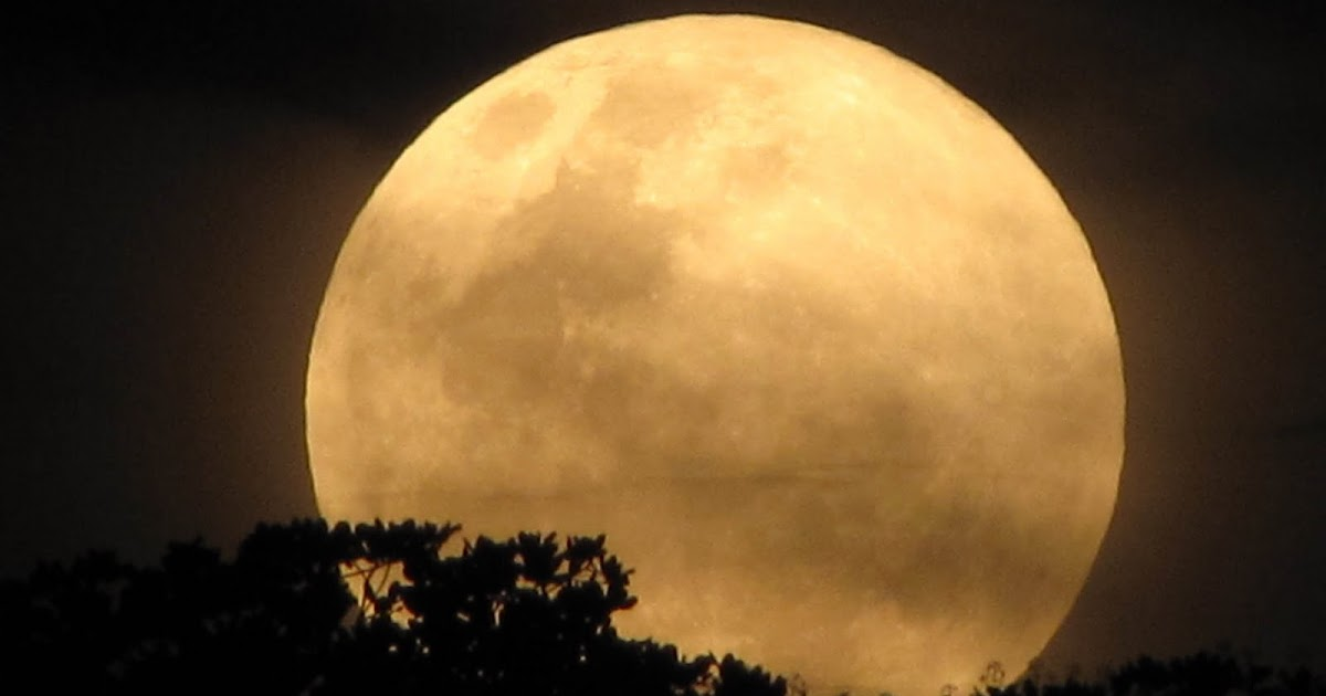 Eu Descobri Que A Solidão é O Grande Lua: JAKUTINGA: Lua Cheia
