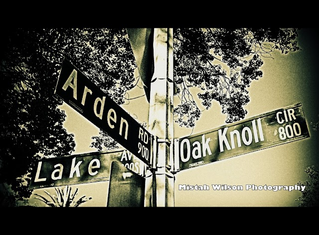 Lake Avenue & 900 Arden Road & 800 Oak Knoll Circle, Pasadena, California by Mistah Wilson Photography